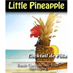 Natural Pineapple Cocktail Premium